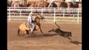 Calf Roping - 1st Go Round Slack - Cheyenne Rodeo - July 19, 2017