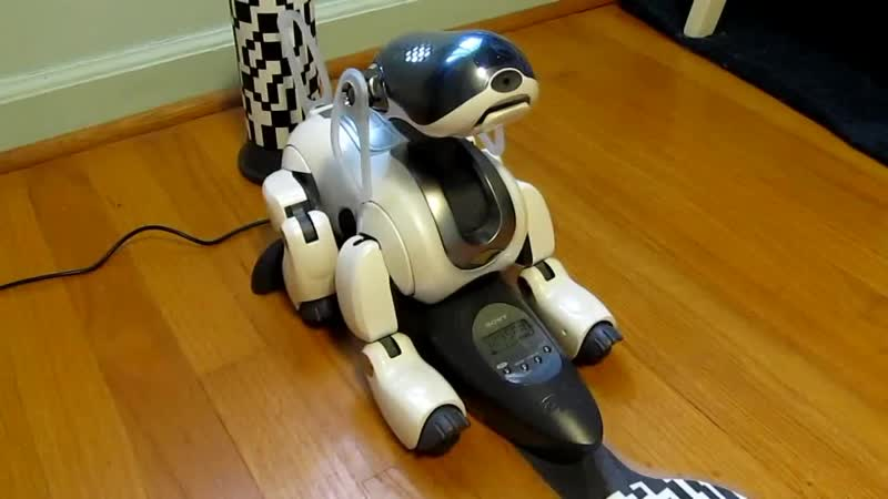 Cute and Smart Sony Robot Dog Aibo ERS-7.MP4.mp4