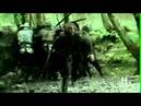 Vikings - Amon Amarth - No Fear For The Setting Sun