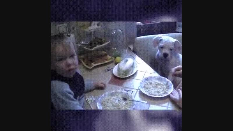 Гениальный способ накормить ребенка