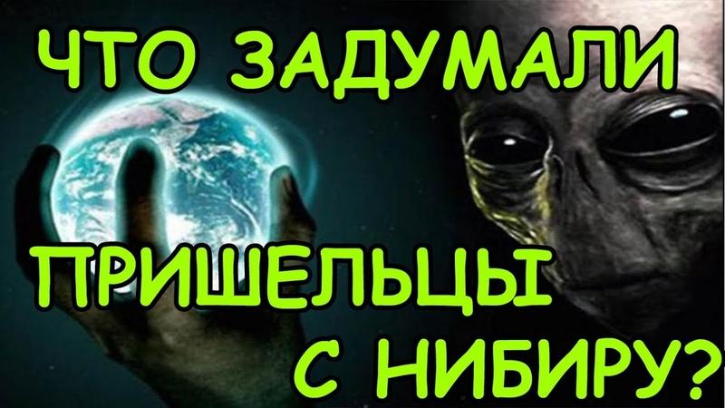 Пришельцы с планеты Нибиру отберут у людей Землю 🔥 Жители планеты х Новости планета Нибиру 2019