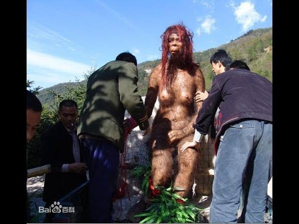 Китайцы произошли от обезьян