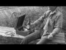 Alcophex Twin