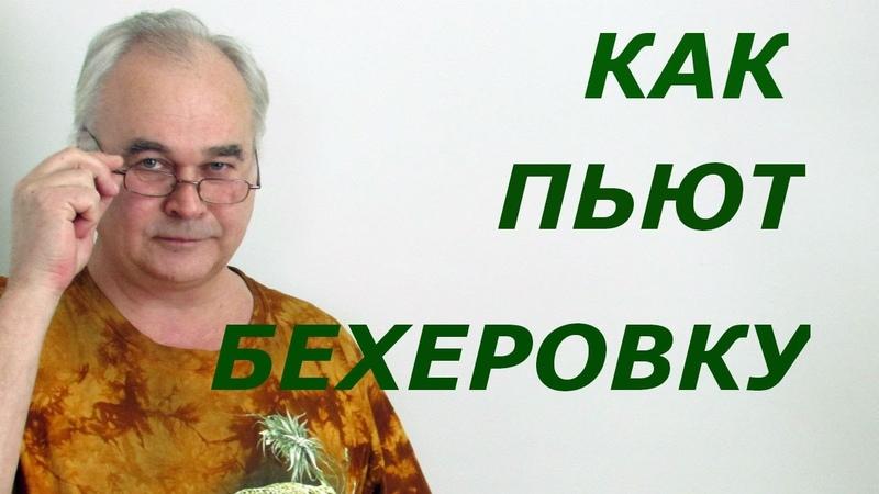 Как пить бехеровку Рецепты настоек Самогон Саныч