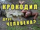 АНТИ ЗАГС Притча о Человекообразных Крокодилах МИСП