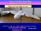 SnowyOwl35iV Swept wing: Flight and Test Flight on Line