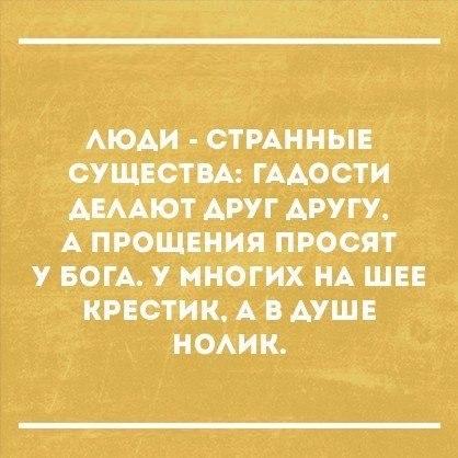 https://pp.vk.me/c635106/v635106345/4b6a/Rog1MT4mZmw.jpg