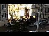 Нападение на таксу бультерьера во дворе Революции 18.