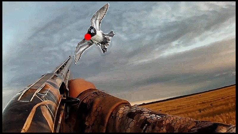 ТОП-5 Видео охоты на утку. Warren Hicks Налёт за налётом!