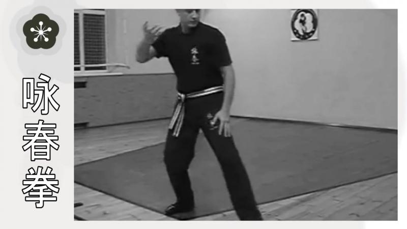 Форма Вин Чун Чам Киу в деталях Сhum Kiu Wing Chun
