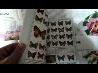 Мои книги про бабочек, жуков и других насекомых:).