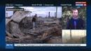 Новости на Россия 24 • Площадь лесных пожаров в Сибири стремительно растет
