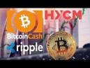 Новости криптовалют. Bitcoin. Ethereum. Bitcoin Cash
