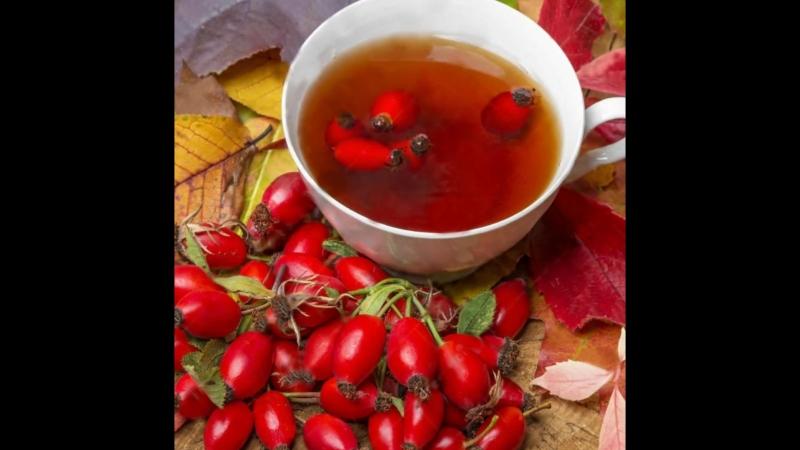 Чайный напиток из сушеных ягод Шиповника Назаровские чаи