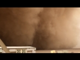 A dust storm swept through Kuwait on 2292018 and the day turned into darkness