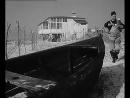 Holubice/ Белая голубка/ Франтишек Влачил 1960