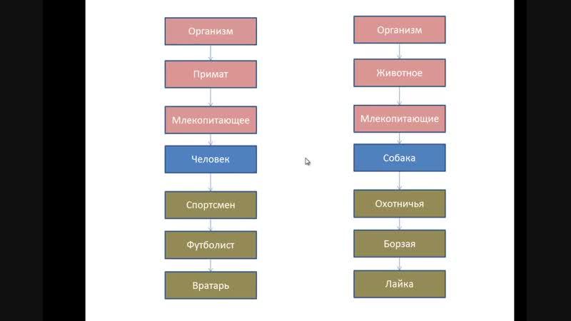 09 - Java SE. Наследование. Часть 1. Разбор д з