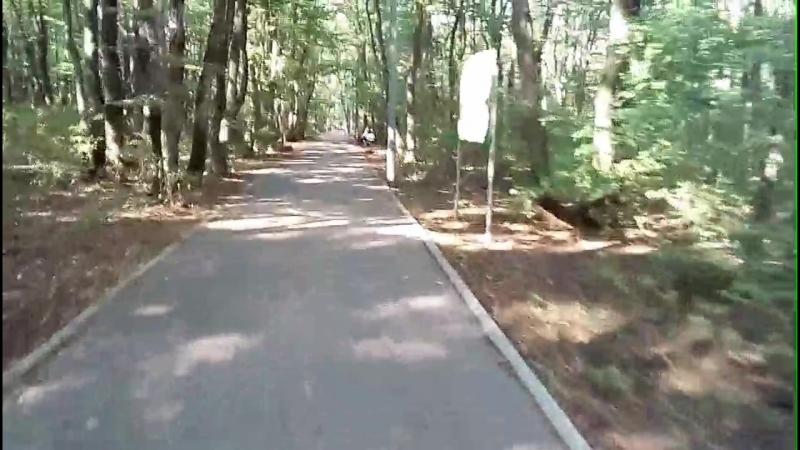Я на велике в лесу по тропе здоровья)