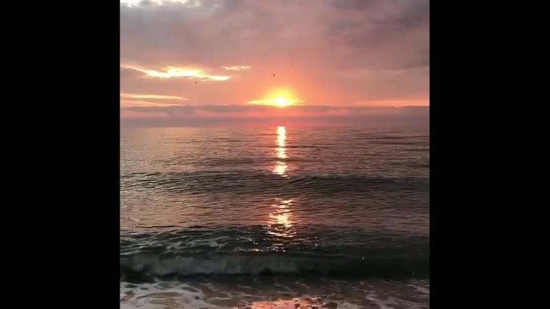 Само море 🌊 не бывает одинаковым. Сколько красоты таят в себе морские глубины 🙄