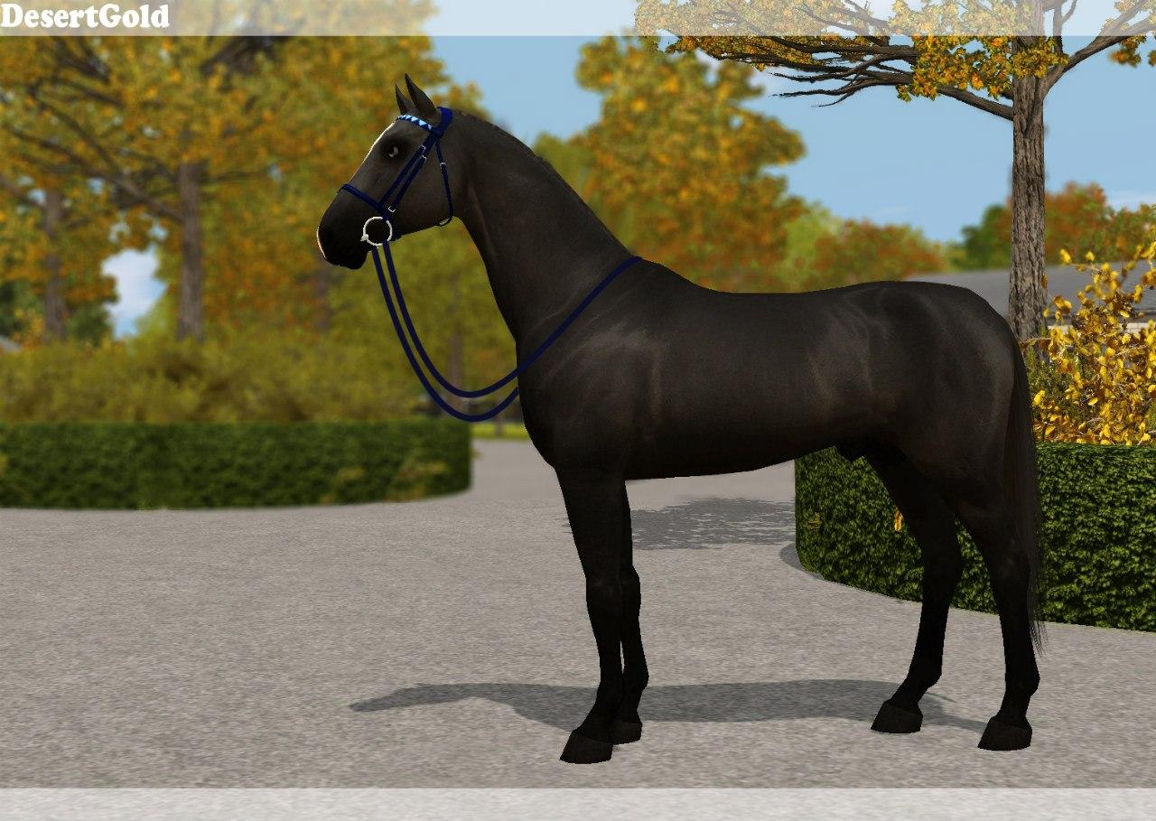 Регистрация лошадей в RHF 2 5qgP_tFLiPo