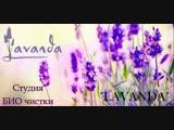 Лаванда Студия БИО чистки