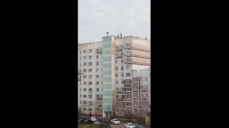Серпухов (Ивановские Дворики)