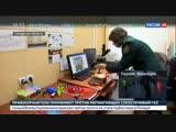 Конструктор с формальдегидом и машинка с ртутью: половина игрушек в российских магазинах - подделка.