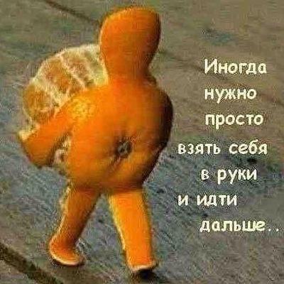 Асланчик Шахзадаев, 5 февраля , Харьков, id225386864