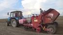 Беларусы МТЗ 82 садят картофель в Гиганте