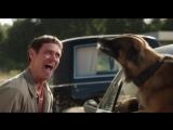 Лучший друг собак. Из фильма