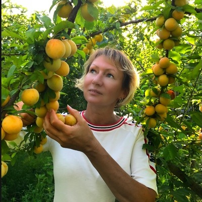 Наталья Липницкая