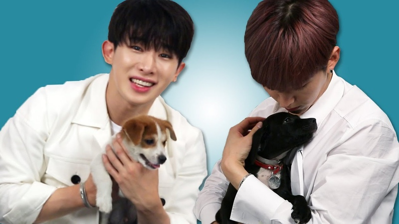 [YT][02.08.2018] Plays With Puppies While Answering Fan Questions (interview with Monsta X) @BuzzFeed Celeb