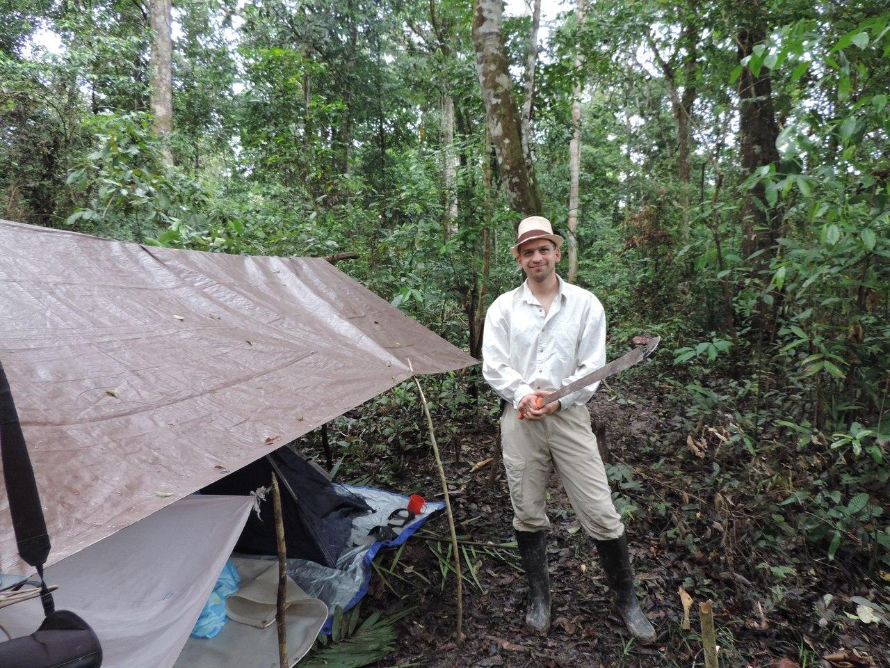 Дождевые джунгли Амазонки