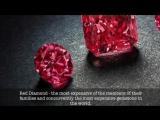 Самые дорогие камни. Treasure Hunters - Кладоискатели