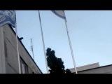 Замороженные флаги или сила Пайпер