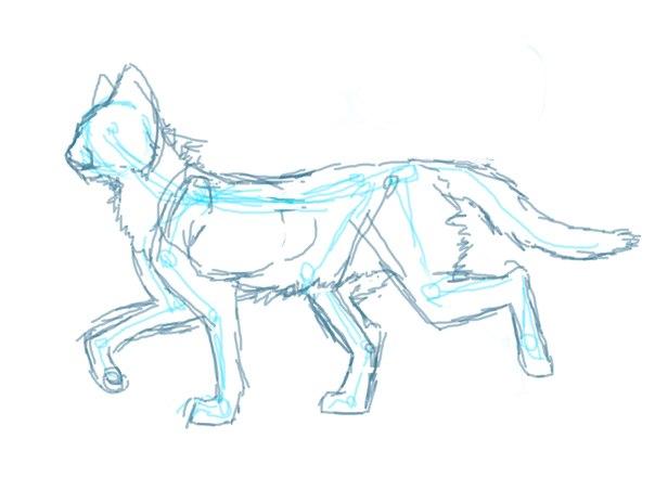 Научится рисовать котов воителей