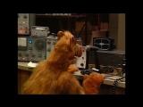 Alf Quote Season 1 Episode 4_Притормозить