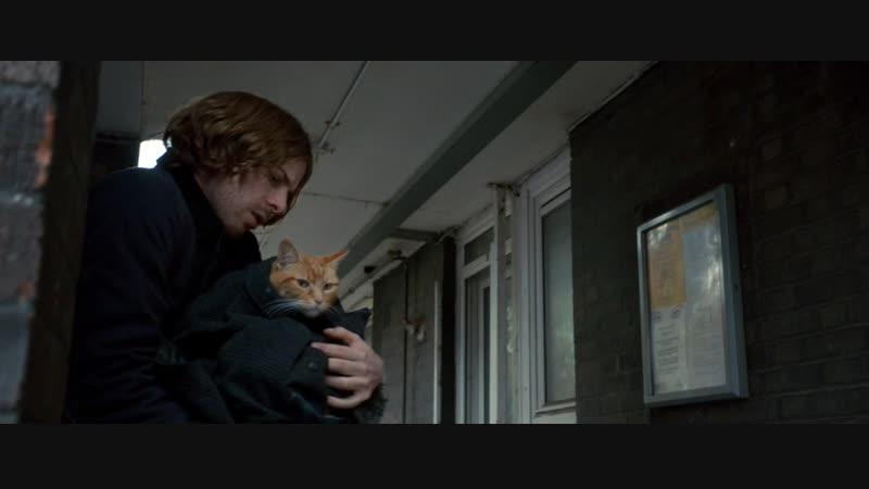 Уличный кот по кличке Боб / A Street Cat Named Bob (2016)