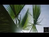 Dua Lipa - Hotter Than Hell (DJ Zhuk remix)