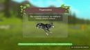 Wild Craft новая игра Быстрая прокачка спаун животных