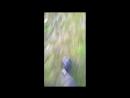 Sparrows crew - До скорой встречи.avi