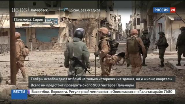 Новости на Россия 24 • Российские саперы принялись за работу в освобожденной Пальмире