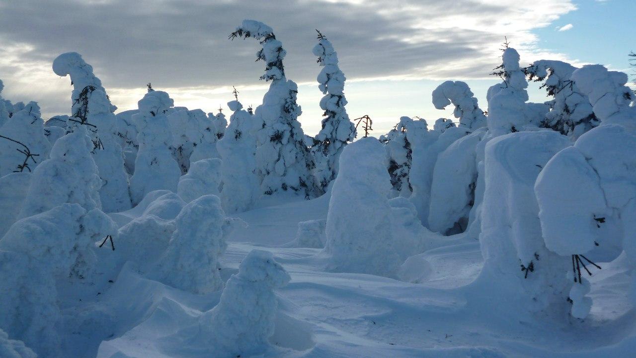 Снежные великаны на Дальнем Таганае (20.12.2015)