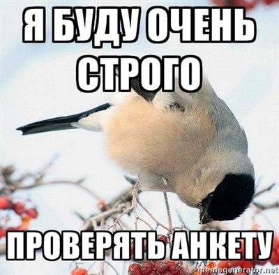 http://cs405329.userapi.com/v405329490/741c/cg6R0dGNAlI.jpg