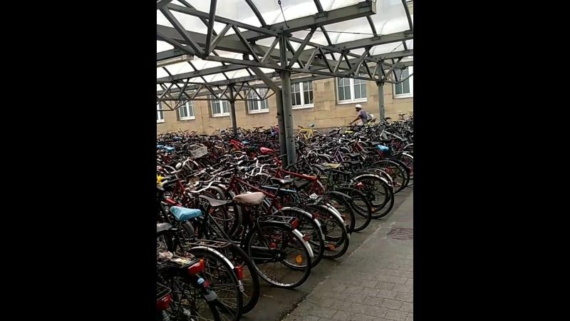Море велосипедов у вокзала в Карлсруэ😀