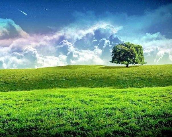 Прованс пейзажи картины пейзажи