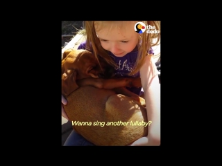 Girl Sings Lullaby to Puppy Her Family Just Adopted - The Dodo
