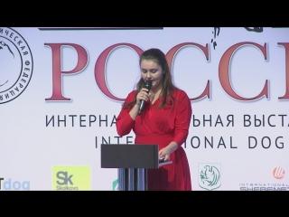 Россия 2018 4 ноября