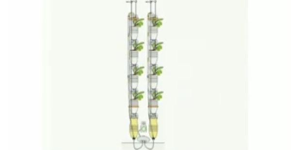 ВИДЕО: Огород в домашних условиях 2.0 →