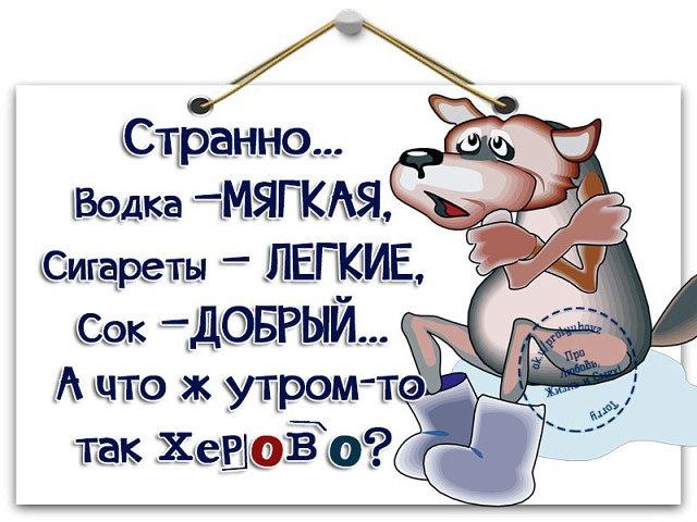 https://pp.userapi.com/c543103/v543103356/2be7c/egUa4FXK0_g.jpg